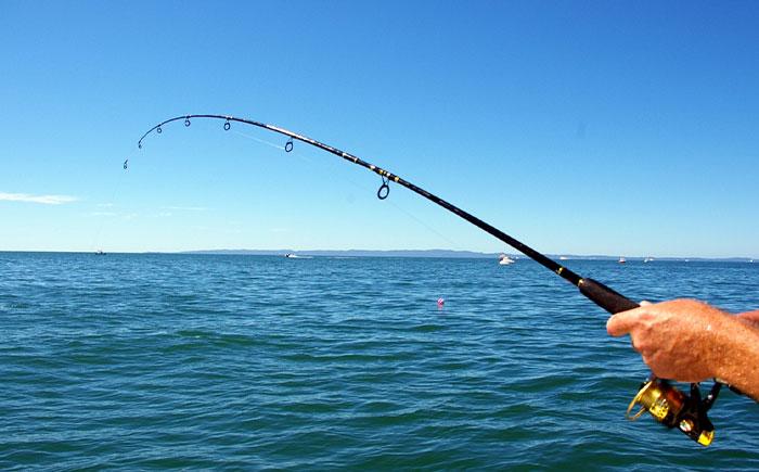 Didim Fishing Trips